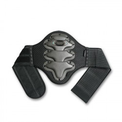 BACK SUPPORT WITH BELT